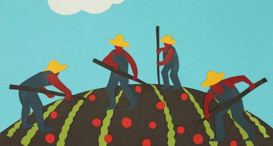 contadini_piccola